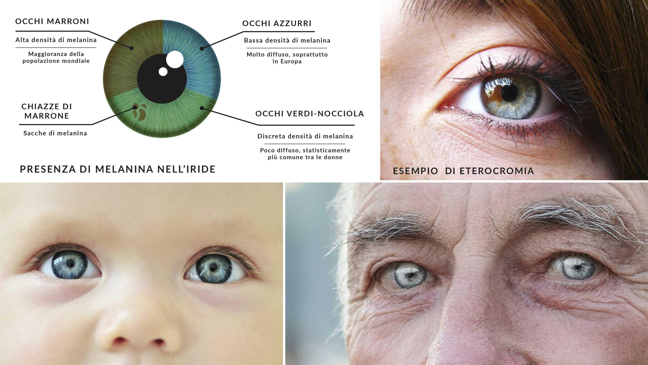 occhio, iride e melanina